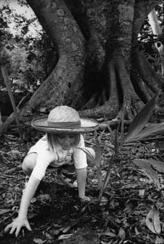 Tree planting at Goonengerry School, 1992Image by Jules Harper